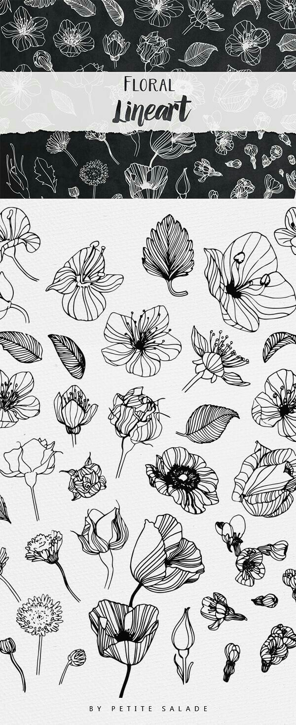 Lots Of Ways To Draw A Flower With Line Botanical Drawings Flower Drawing How To Draw Hands