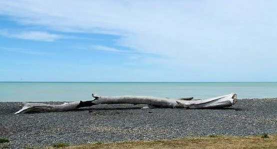 Haumoana beach, NZ