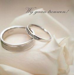 Trouwkaart: Twee zilveren ringen op witte roos. Trouwkaarten online maken en bestellen. Prachtige trouwkaarten met ringen: kies een trouwkaart, schrijf de tekst, en vraag een gratis proefdruk op! http://www.trouwpost.nl/trouwkaarten/ringen/