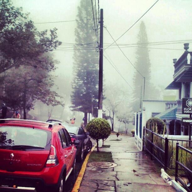 Super rico clima #xalapa - @Ls Mrn- #foggy #Veracruz #mexico