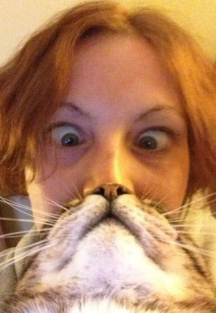 Twist on cat with fish to twisted pictured of cat with person!  Caturday felids: cat contest winners and miscellanious moggieana ...