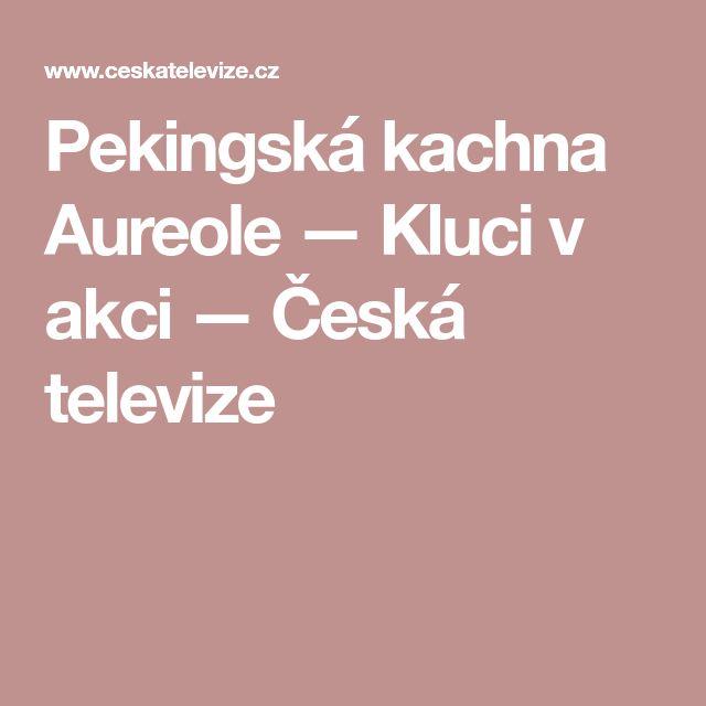 Pekingská kachna Aureole — Kluci v akci — Česká televize