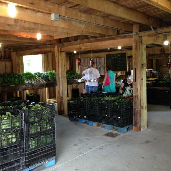 Gorman Produce Farm CSA - Howard County Maryland