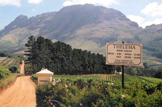 Thelema - Stellenbosch - South Africa