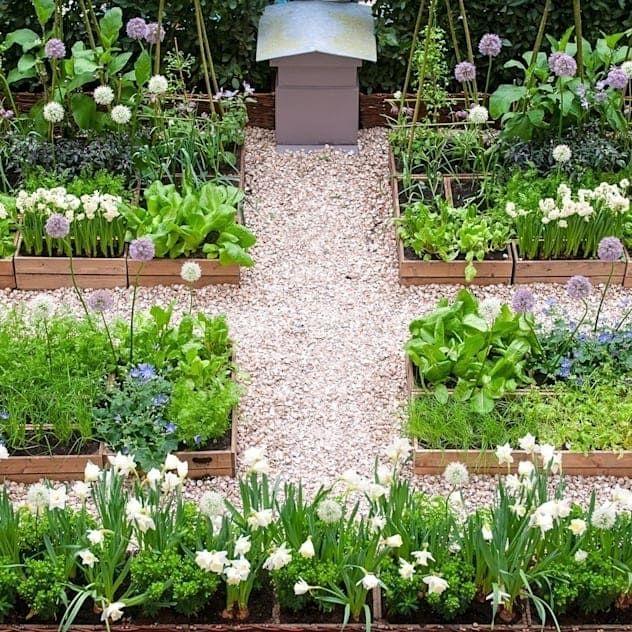 Garden Plants Easy To Maintain