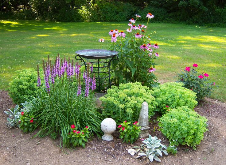 Landscaping Over A Septic Tank : Tank on septic system systems and