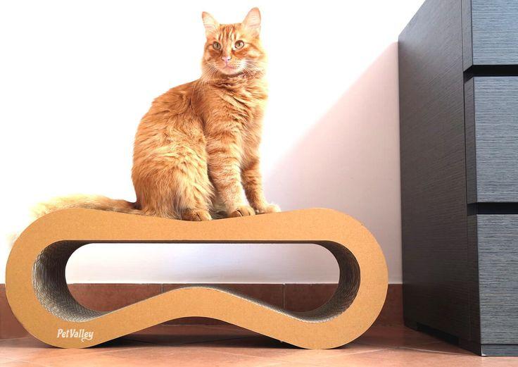 Cuccia Palestra e Graffiatoio,Completamente Riciclabile Prodotto di Design in Cartone ondulato,ideale come lounge Tiragraffi per Gatti letto