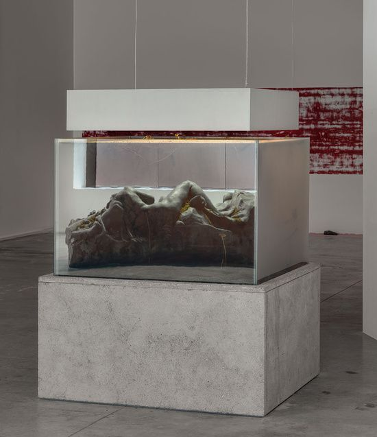 Pierre Huyghe IN BORDER DEEP