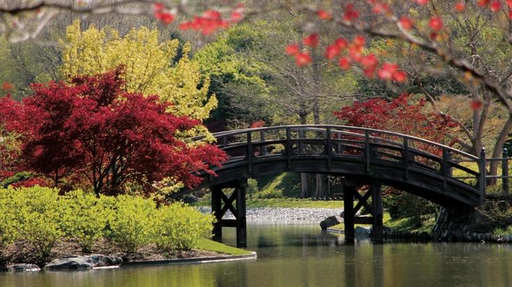 Missouri Botanical Gardens  St. Louis, Missouri