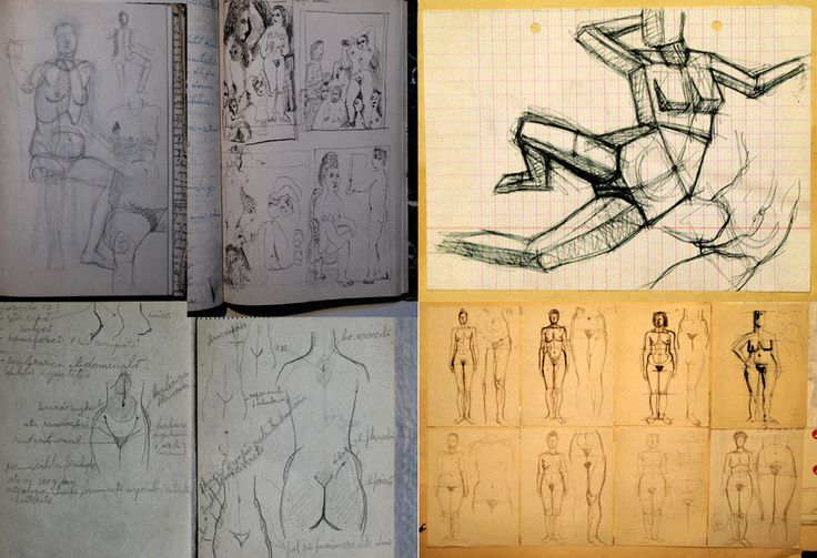 studii schite nud