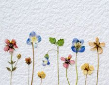 dried flower craft ideas 25 best ideas about pressed flower craft on 4286
