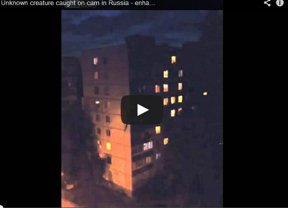 FUNNY OR SCARY? THINGS CAUGHT ON VIDEO-TRUTH STRANGER THAN FICTION?  http://omgshots.com/2423-caught-on-video-strange-creature-scaling-building-in-russia.html