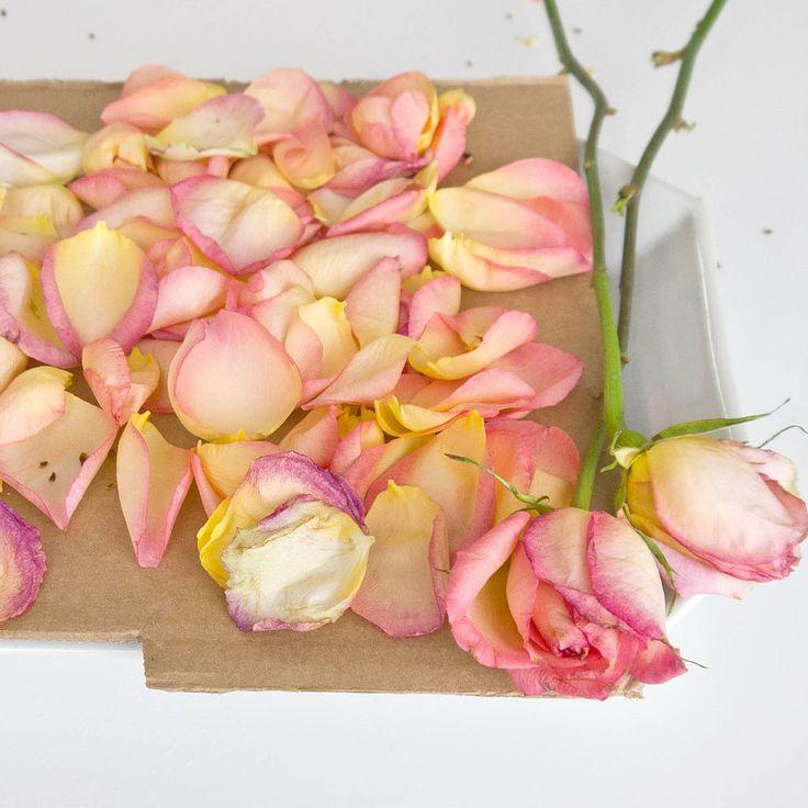 Homemade Rose Petal Potpourri   POPSUGAR Smart Living