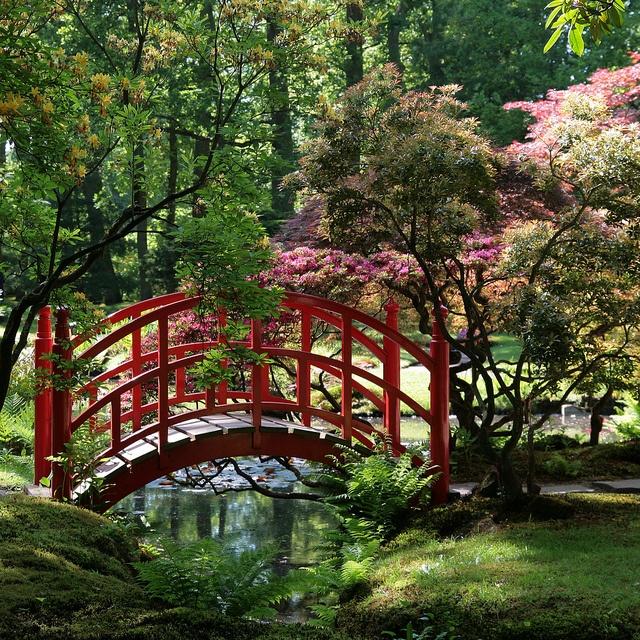japanese garden elements bridge clingendael den haag