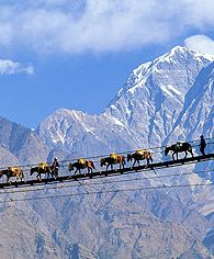"Footbridge in Nepal >> Not for me, but WOW! Imagine if this was involved in your ""daily commute""?"