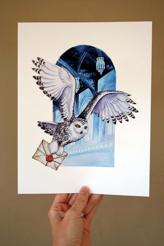 Owl Mail Archival Quality Print Based On The Original Watercolor Harry Potter Tattoos Fanart Harry Potter Eule Zeichnung