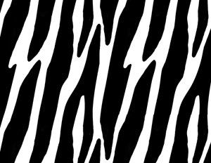 44 best Zebra Print Wall Border images on Pinterest | Zebra print ...