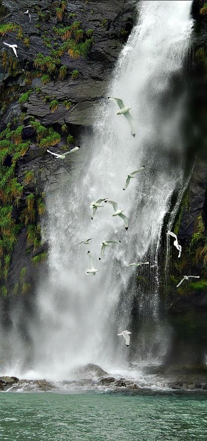 Waterfall (Alaska) by Dina  Adornetto / 500px