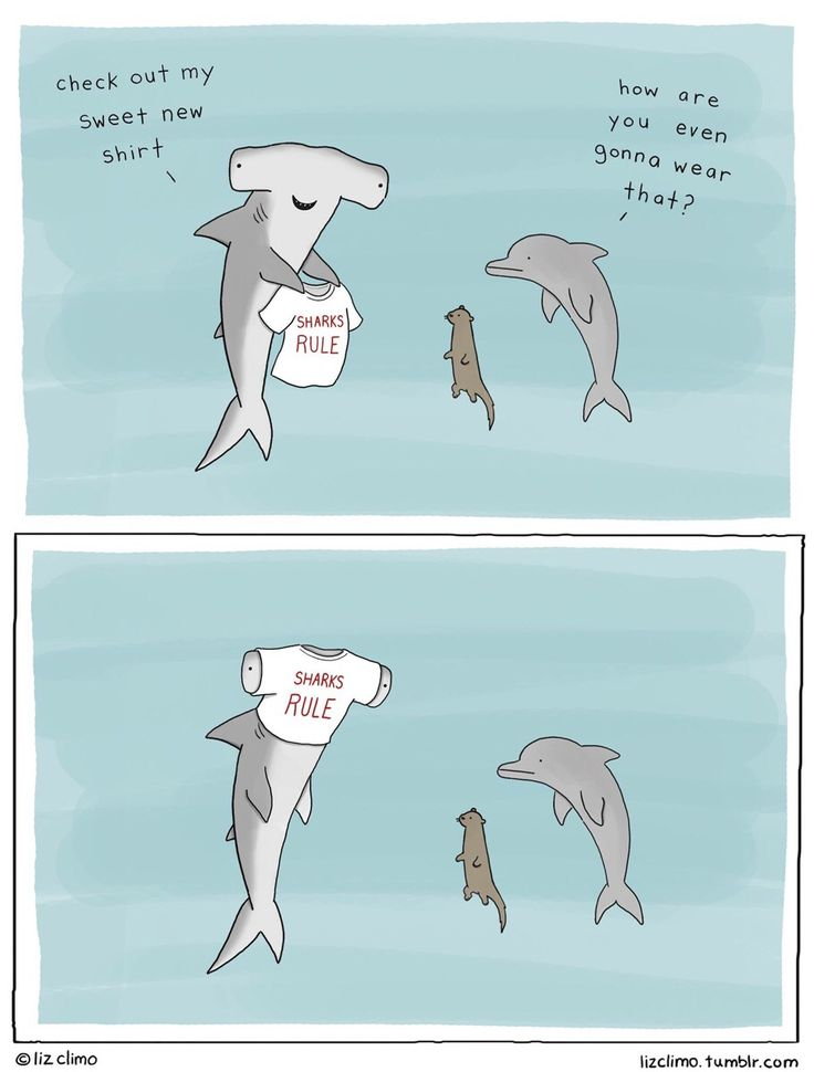 Sharks Rule | I'm laughing so hard right now.... hahahahahahha