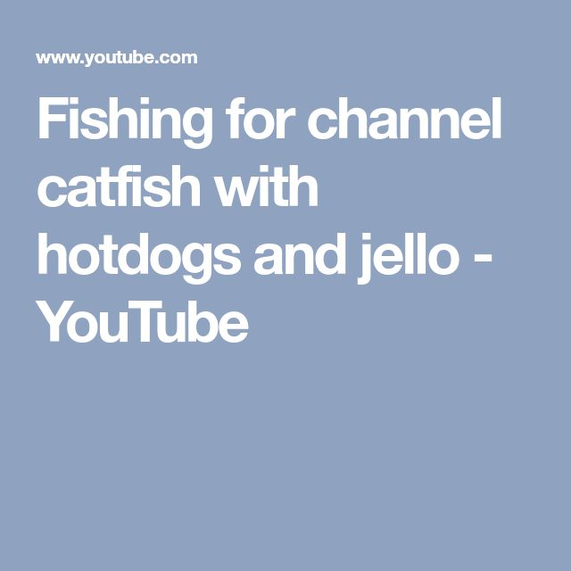 Fishing for channel catfish with hotdogs and jello - YouTube