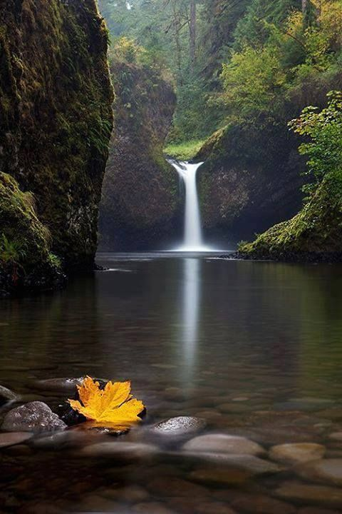 Columbia River Gorge, Punch Bowl Falls, Oregon