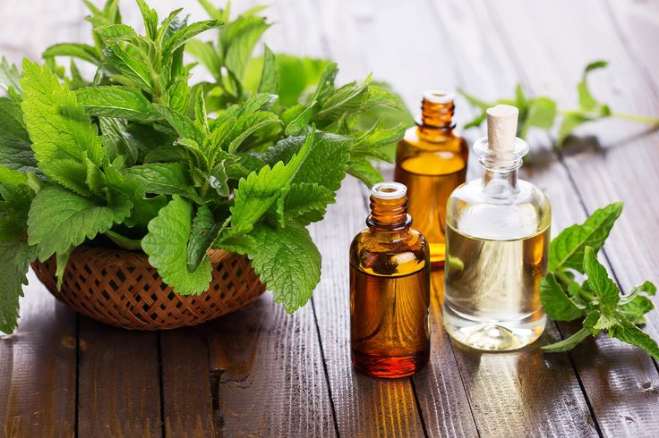 Peppermint Oil for Hair Growth is FINALLY Backed by Research