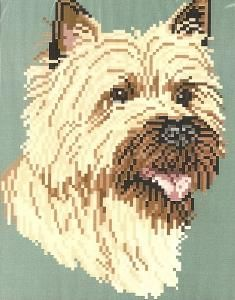 Brenda Franklin DC 203 Cairn Terrier. 75 x 99 stitches. Cross Stitch, Petit Point, Needlepoint, Waste Canvas, & Rug Hooking Pattern.