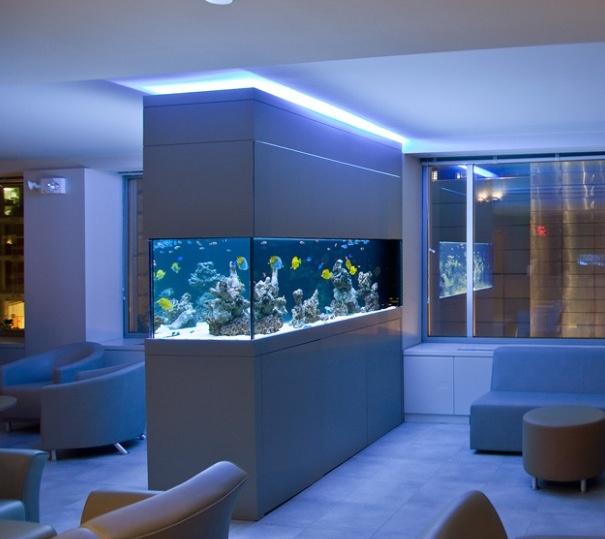 Living Room Decorating Ideas Fish Tank 42 best fish tank - tanks images on pinterest | reef aquarium