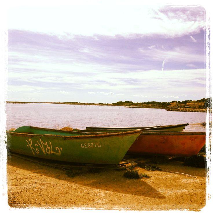 Barques, couleurs au bord de l'étang