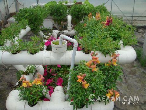 Выращивание растений на грядках из пластиковых труб   Сделай Сам www.sdelay.tv