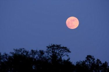 La superluna, il fenomeno astrologico che ha attirato fotografi e appassionati per immortalare le varie colorazioni del satellite