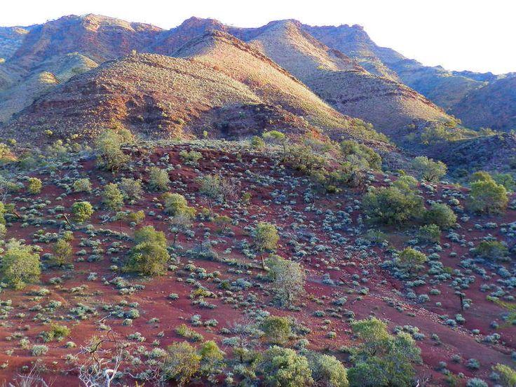 Walk the Heysen Trail from Parachilna Gorge, South Australia! MORE: http://www.redzaustralia.com/2015/07/5-angorichina-adventures-northern-flinders-ranges/