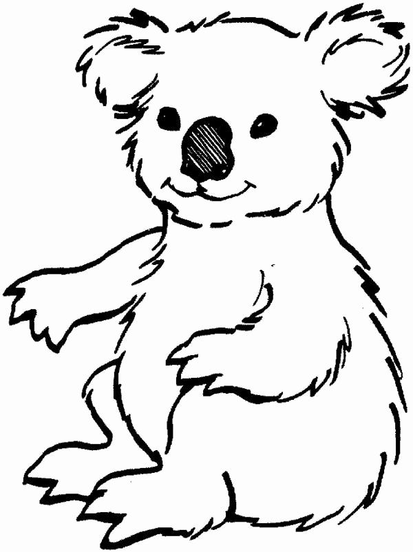 Animal Koala Kids Coloring Pages Farm Animal Coloring Pages Bear Coloring Pages Animal Coloring Pages