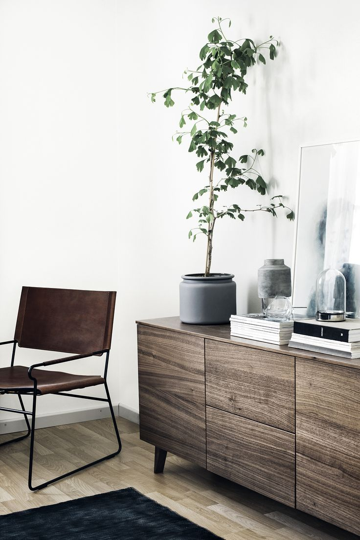 Living space with white walls, wood floors, wood cabinets, brown leather chair, and a large potted plant