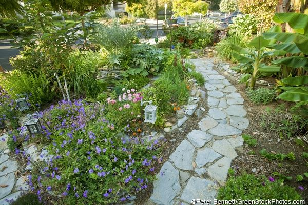 1000 images about for mom on pinterest garden paths for Permaculture garden designs
