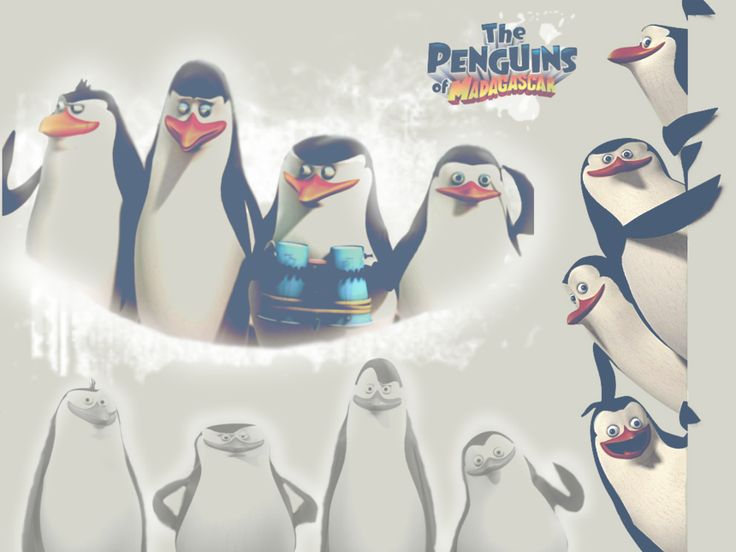 The Penguins of Madagascar :)