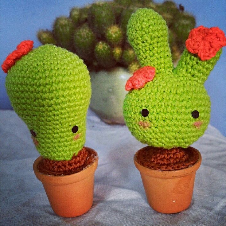 Cactus... Nobody can go back and start a new beginning , but everyone can start today and make a new ending .