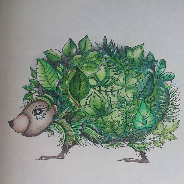 Kolorowanki Kolorowankidladoroslych Kolorowamafia Coloredpencil Johanna Basford Enchanted Forest Enchanted Forest Coloring Enchanted Forest Coloring Book