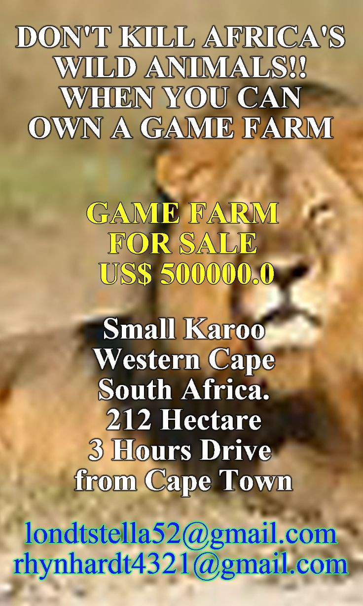 DONT KILL AFRICA'S WILD ANIMALS. BUY A GAME FARM IN SOUTH AFRICA