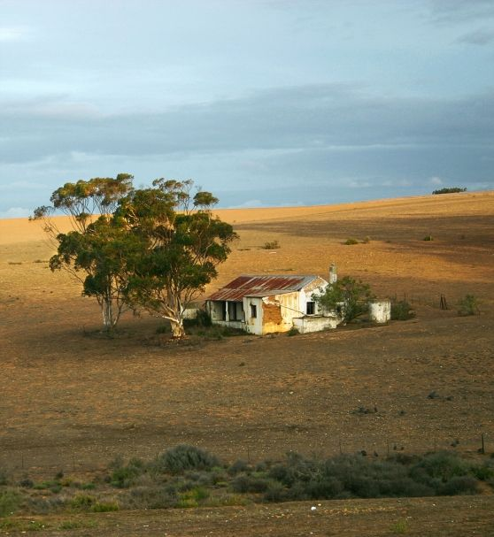 VISI / Articles / Overberg Oasis - Western Cape - South Africa
