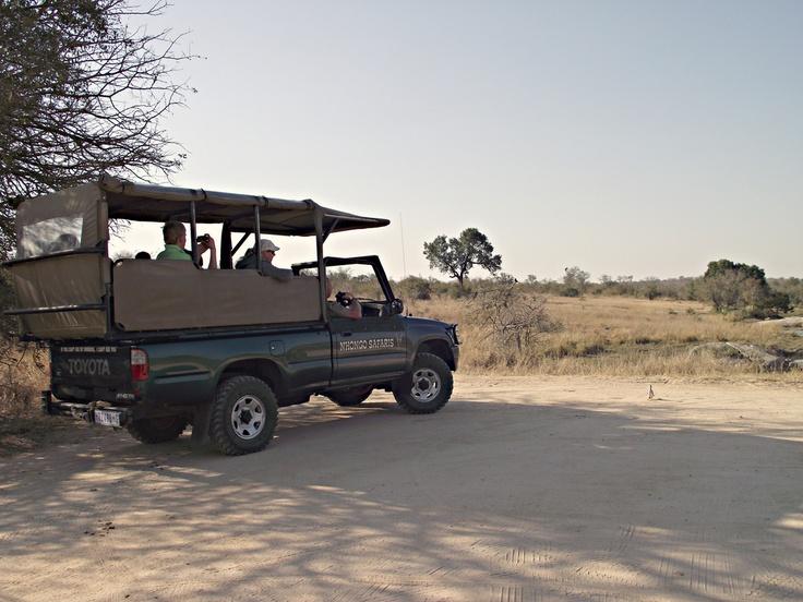 atching hippos at Transport Dam.