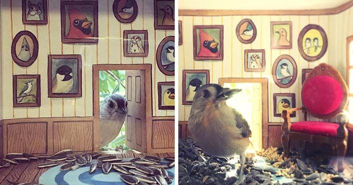 Ilustrátorka z Portlandu Jada Fitch vyrába mini domčeky pre vtáčiky. Búdky upevňuje na sklo okna, čo jej umožňuje pozorovať vtáčikov zblízka. Nápad