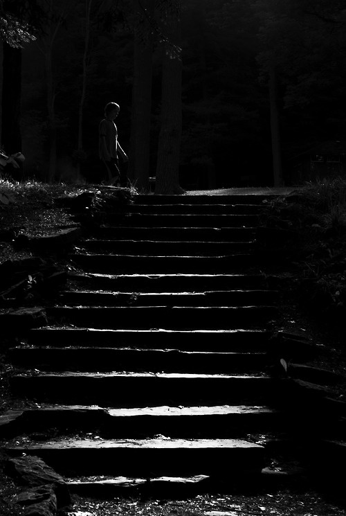 """A credit to the photographer, these stairs appear brooding and dangerous. The light hits them in such a way as to evoke this sixth sense of fear. Ordinary stairs pose the danger of falling down (or up), but these stairs seem to suggest a danger that may or may not be immediate. They evoke the """"fight or flight"""" reflexes and emotions, that somehow the path that they lead you to is not altogether safe."""