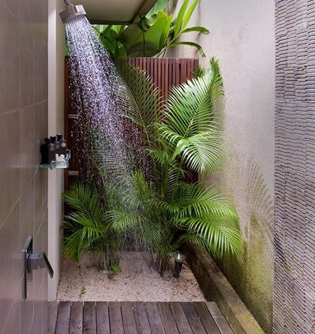 Les 25 meilleures id es de la cat gorie salle de bain spa - Plante pour salle de bain ...