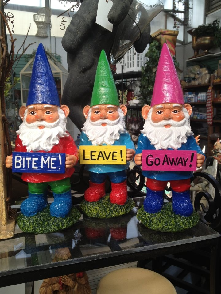 not such nice sentiments but cute gnomes dude with the pink had has