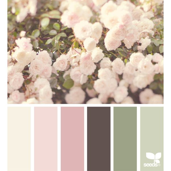 design seeds | search | for all who ♥ color ❤ liked on Polyvore featuring backgrounds, colors, design seeds and paint