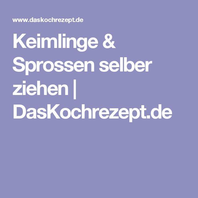 Keimlinge & Sprossen selber ziehen | DasKochrezept.de
