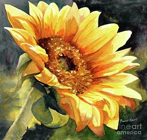 Sunflowers Painting - Looking To The Sun by Bonnie Rinier