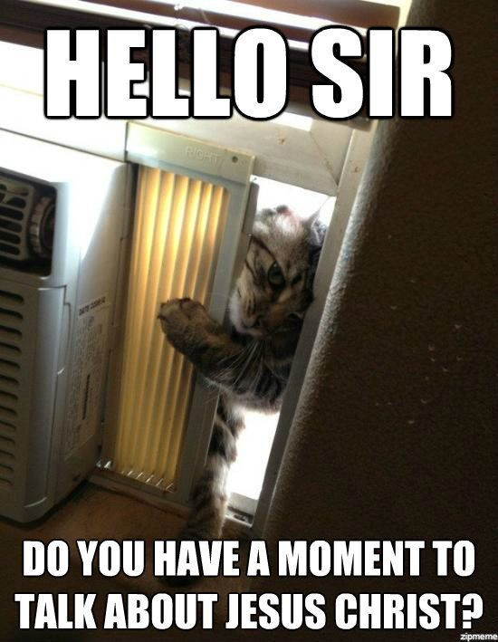 hahah! this is hilarious: The Doors, Laughing So Hard, Funny Cat, Jesus Christ, Funny Quotes, Jehovah Witness, Books Of Mormons, So Funny, Kitty