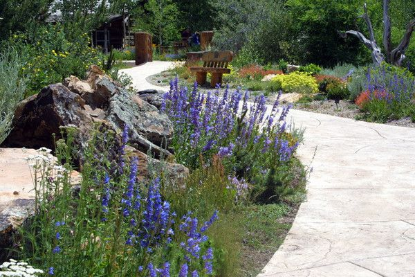 betty ford alpine garden vail co garden pinterest. Cars Review. Best American Auto & Cars Review